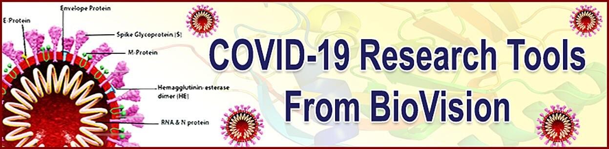 Białka do badań COVID-19