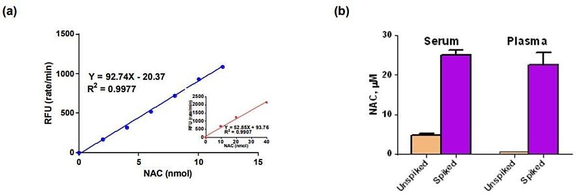 N-acetylocysteina (NAC) jest prekursorem biosyntezy L-cysteiny i glutationu.