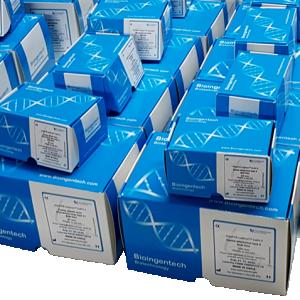 Rat Corona Virus & Sialoda Cryoadenitis Virus detection kits