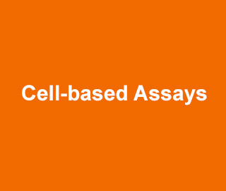 BioVision Cell-based Assays